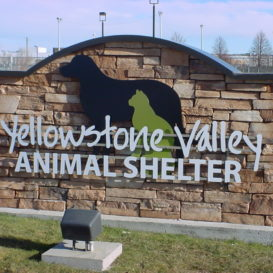 Animal shelter monument sign with light